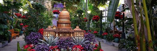 Christmas National Mall Walk Concert Botanic Al Garden Decorated Trees Carols Georgetown