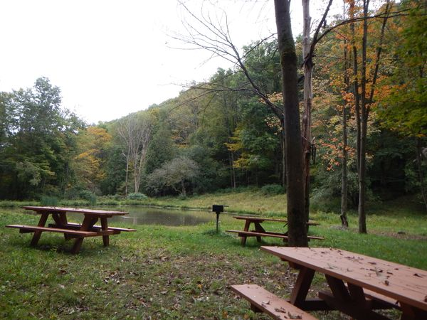 Elkdale State Forest Picnic Area