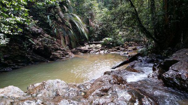 Pelepah Waterfall Abseiling (Unlimited Tries) & Hiking starting at Kota Tinggi Johor Malaysia