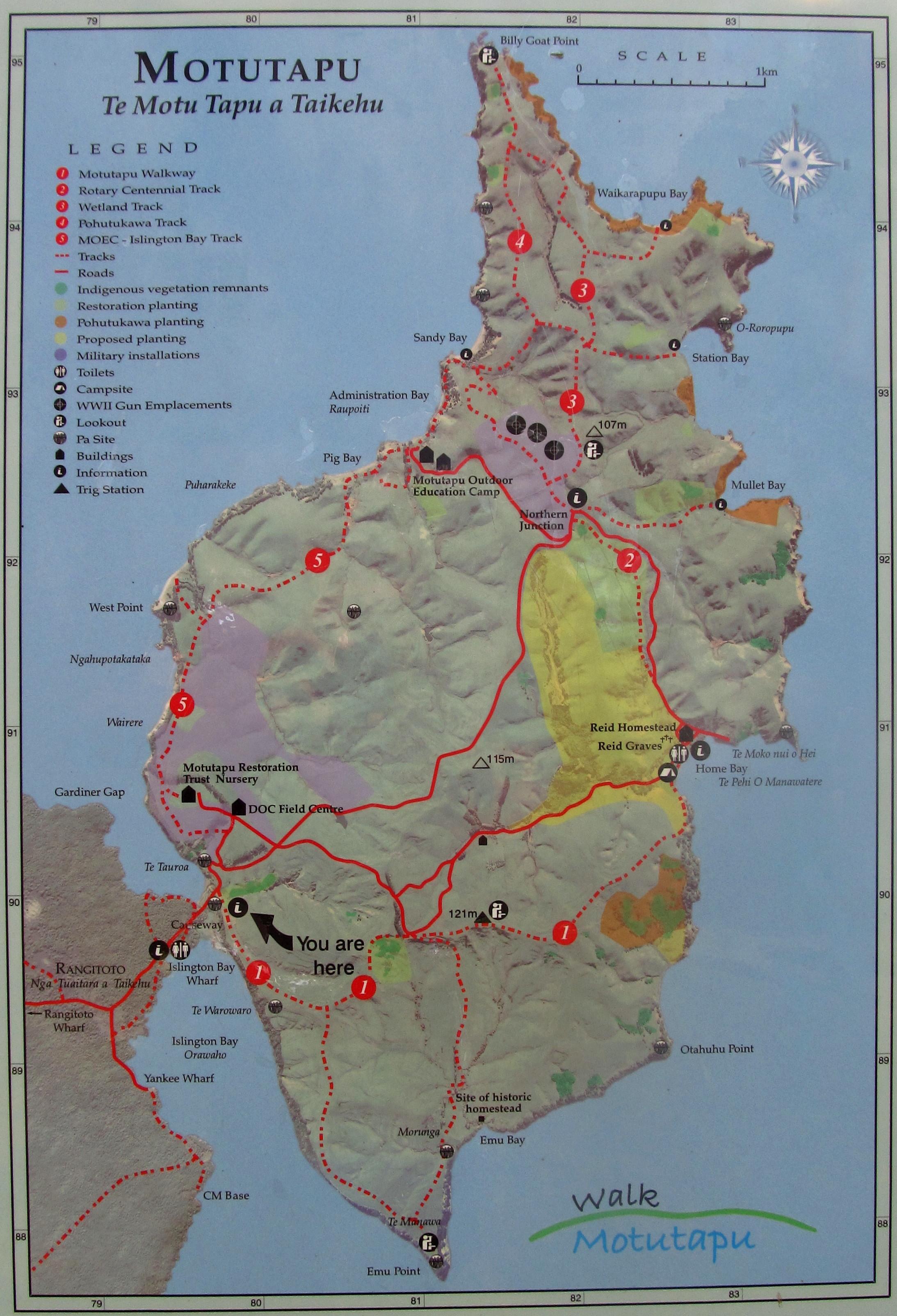 Motutapu Island Day Hike | Meetup