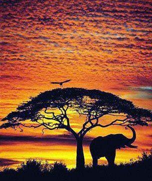 Singles Dinner - African Themed Evening - Fun Seekers Johannesburg ...