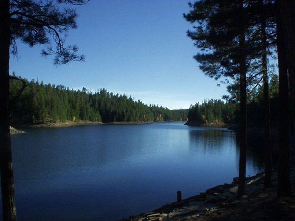 Knoll lake camping fishing kayaking atv riding for Camping and fishing in arizona