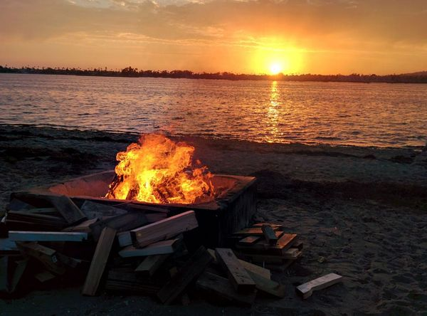 Doggie Beach Bonfire | 20s and 30s Dog Owners of San Diego ...